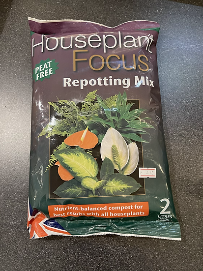 House plant focus reporting mix 2ltr