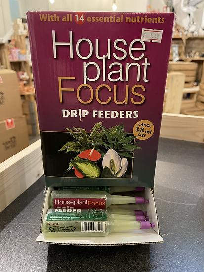 House plant focus drip feeder 38ml