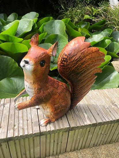 Squirrel mother