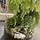 Thumbnail: Open top tall terrarium natural gravel fern green