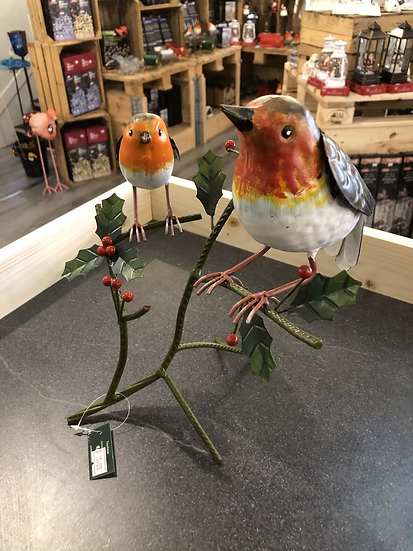 Robins on holly branch