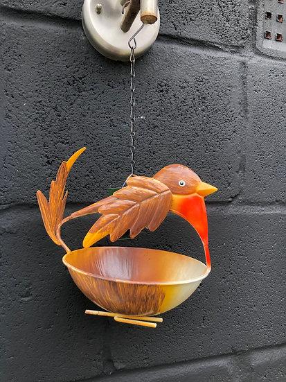 Robin Bird Feeder
