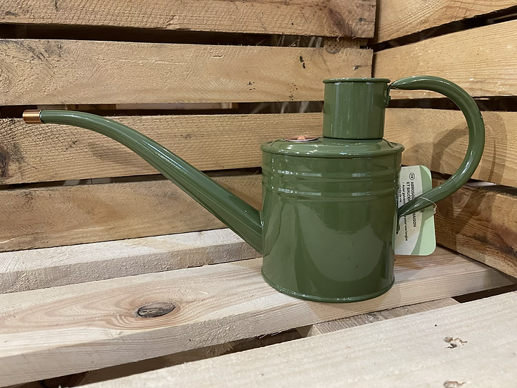 1l sage watering can
