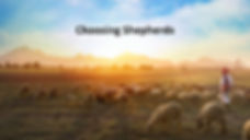 the role of shepherds.jpg
