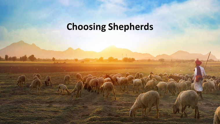 the role of shepherds.jpg