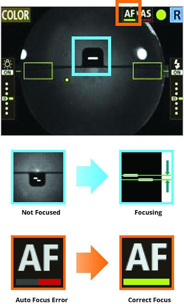 Canon CR-2 AF Plus Screen Shot.jpg