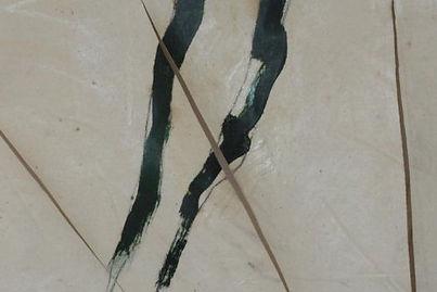 Avant restauration - Coupure de la toile