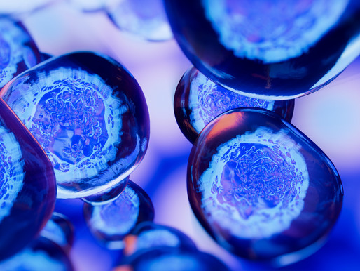 What's the deal with Stem Cells?
