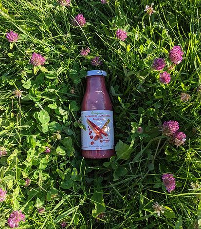 Oregana raparperi-mansikka smoothie lasipullossa aseteltuna kesäiseen nurmikkoon.
