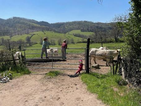 Souvenir de vacances à la ferme