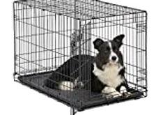 Dog Crate.jpg