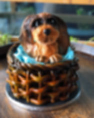 Puppy cake square.jpg