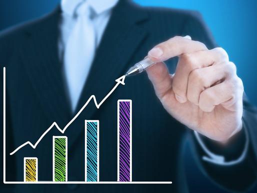7. Tipos de Investidores