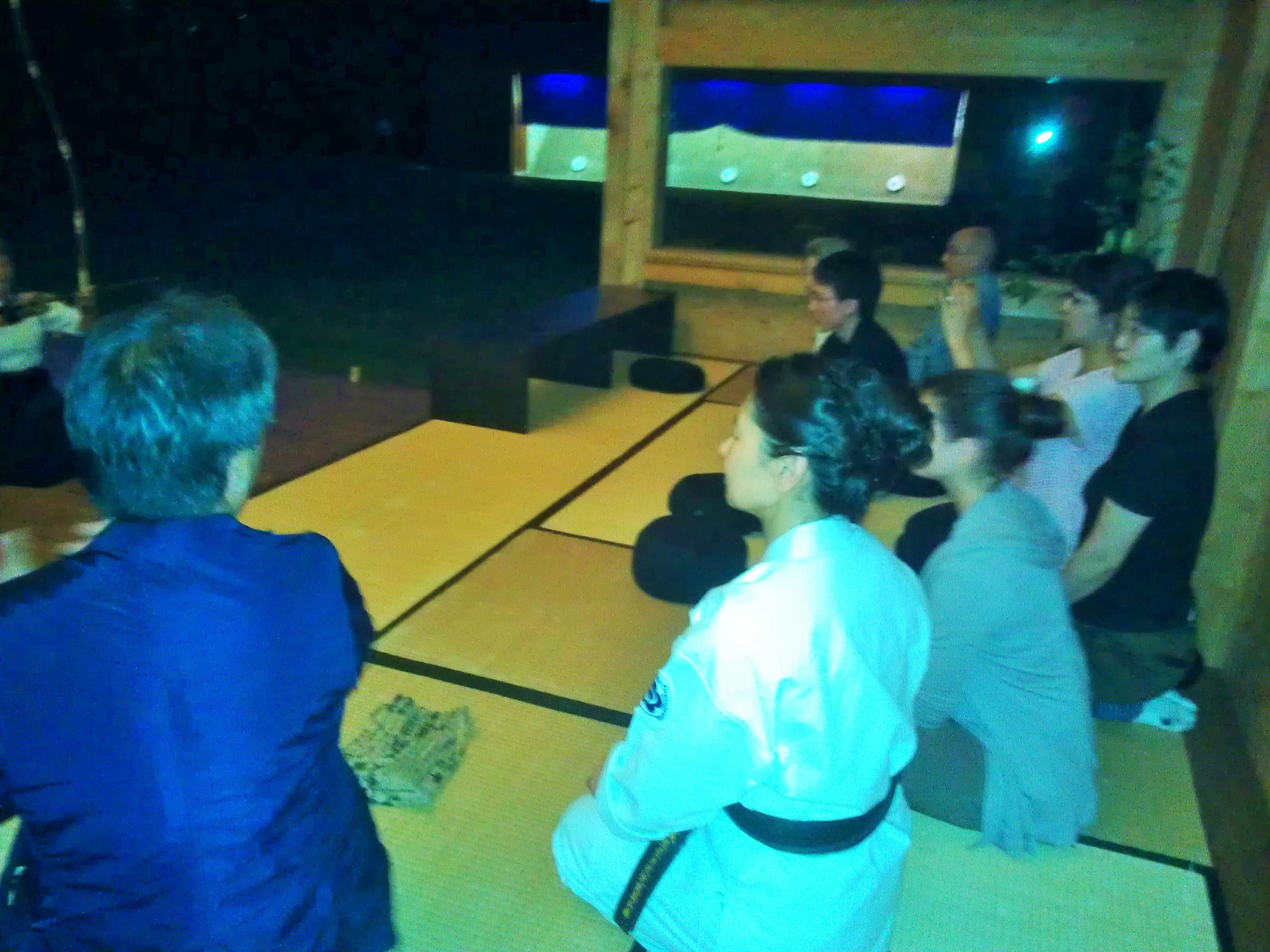 04.06.2015, Seminar Shibata XXI, japanischer Abend, WP_001369