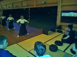 04.06.2015, Seminar Shibata XXI, japanischer Abend, WP_001372