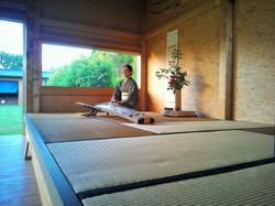 04.06.2015, Seminar Shibata XXI, japanischer Abend, WP_001317