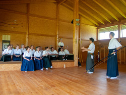 2019.06.08-10. Seminar Shibata XXI,