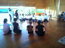 04.06.2015, Seminar Shibata XXI, japanischer Abend, WP_001323