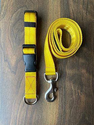 Yellow Nylon Collar & Leash Set