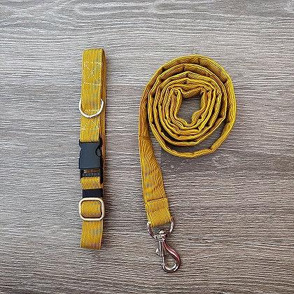 Dandelion Yellow Collar & Leash Set