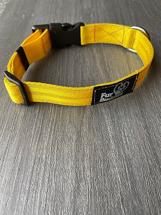 Yellow Nylon Collar