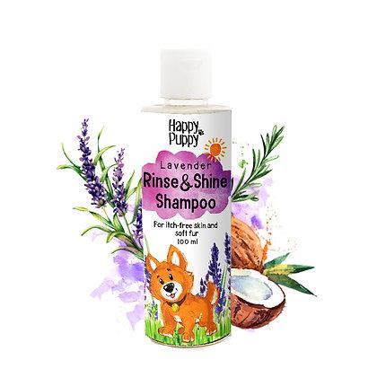 Rinse And Shine Shampoo