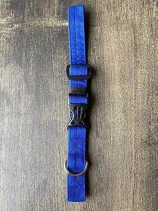 Royal Azure Blue Collar