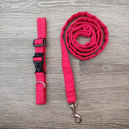 Candy Apple Red Collar & Leash Set