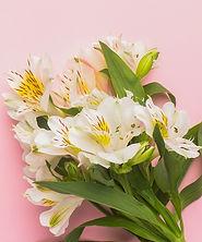 1. Thumbnail for Flowers.jpg
