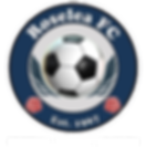 RoseleaFC_Logo3D White Text.png