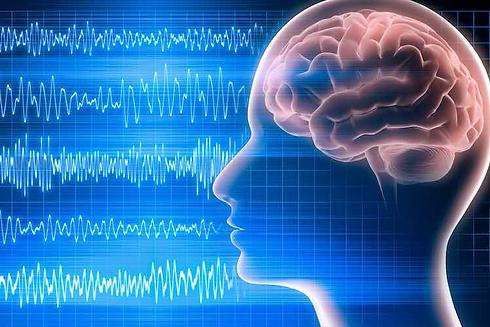 EEG foto 3.png