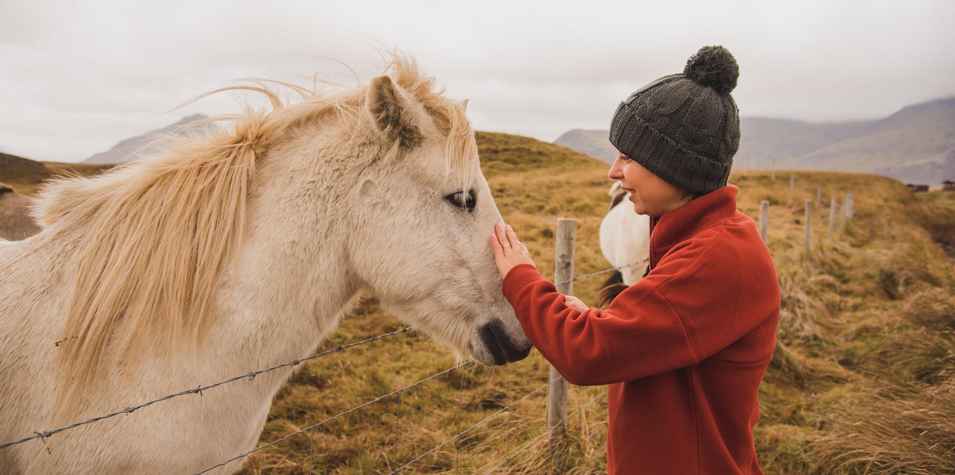 Iceland Oct. 2019-290.jpg