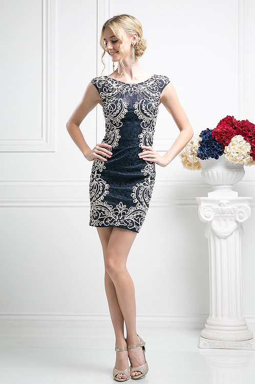 Sleeveless Embroidery Threaded Lace Illusion Prom Dress