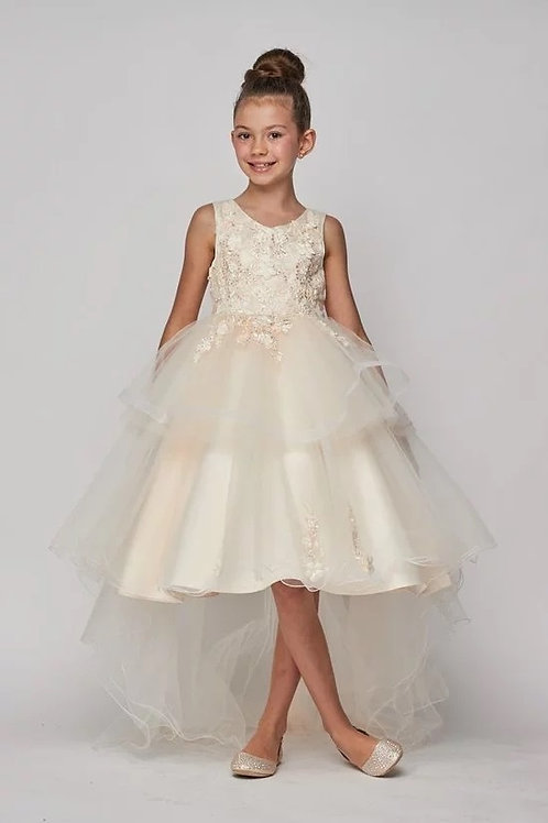 Sequins Lace Applique Flower Girls Dress by Cinderella