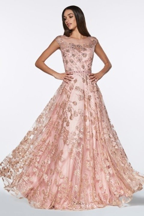 Illusion w. Embellished Floral Print Lace Prom Dress