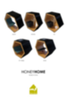 honeyhome modular.jpg
