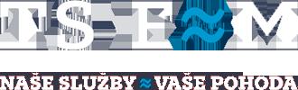 logo_tsfm_2.png