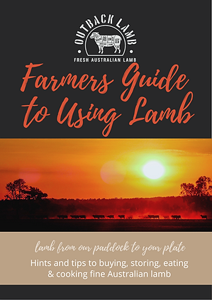 Guide_to_Lamb_final (1).png