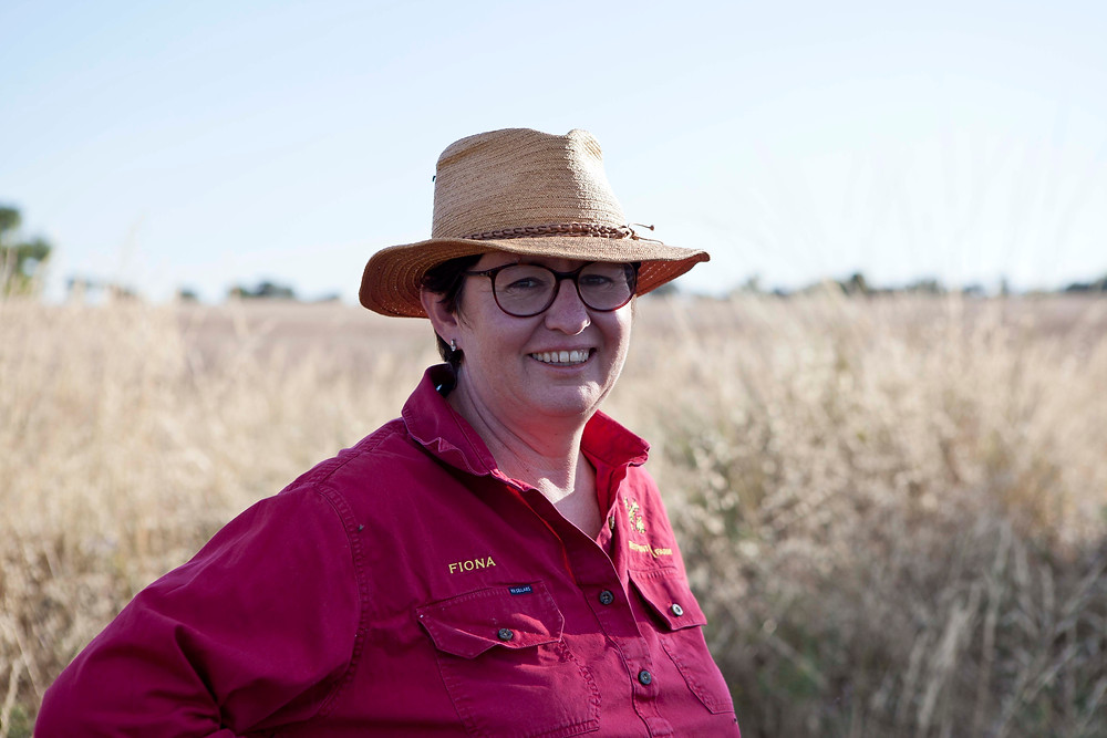 Fiona Aveyard Outback Lamb