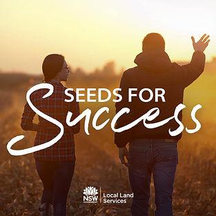 SeedsForSuccess_PodArt_1000x1000.jpg