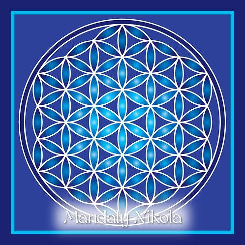 Květ života - modrá tmavá