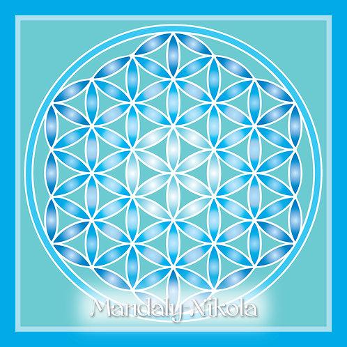 Květ života - modrá