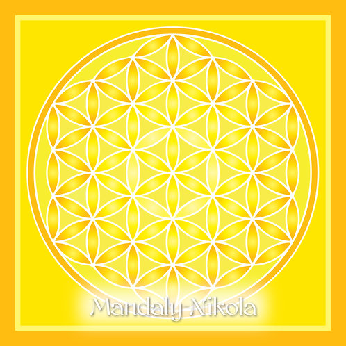 Květ života - žlutá