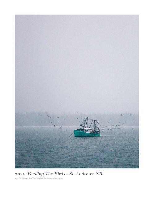 Feeding the Birds - St. Andrews, New Brunswick