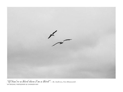 """""""If You're a Bird, I'm a Bird"""""""