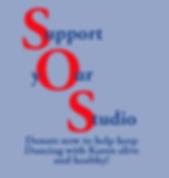 SOS-Donate-10x10.png