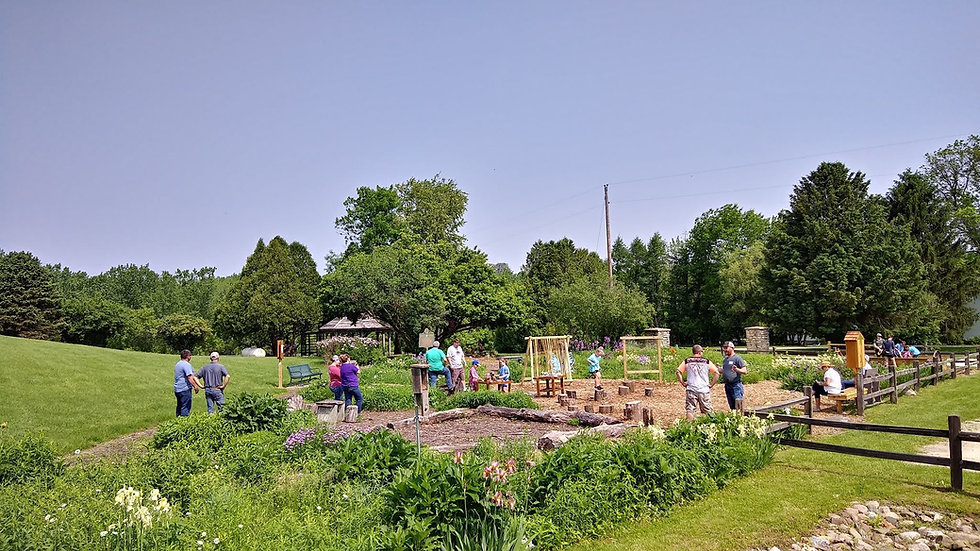 garden with people.jpg
