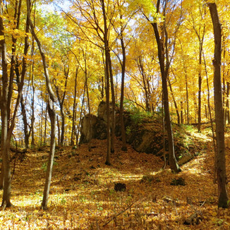 Pleasant Ridge Wildlife Area
