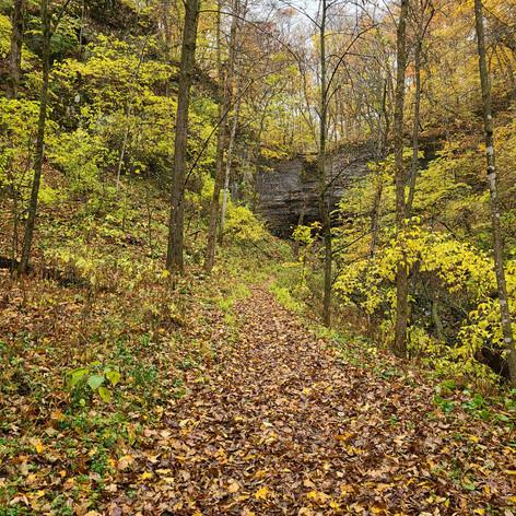Dutton's Cave County Park