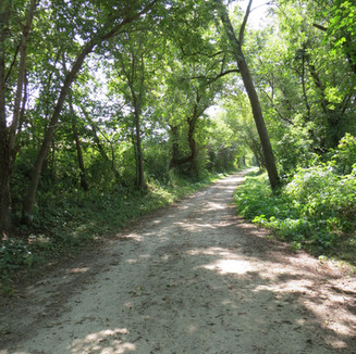 Pony Hollow Trail